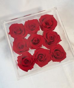 Preserve Red Roses Acrylic Box