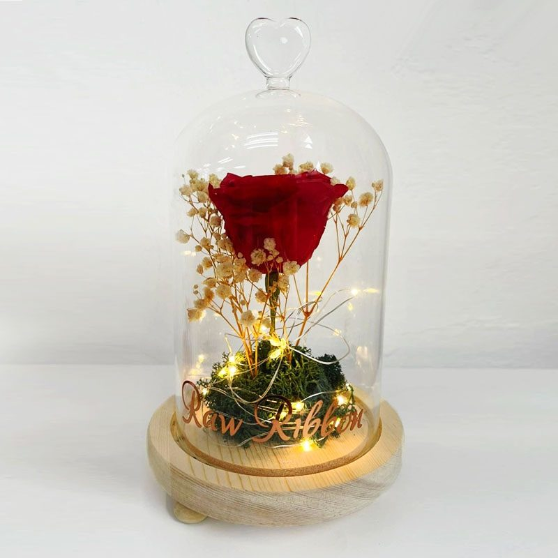 Preserved Red Rose Belljar